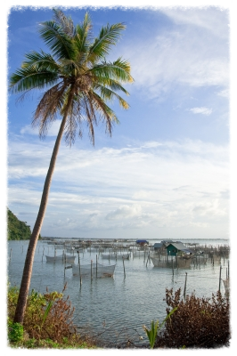 Fishing Village - Sura_Nualpradid via FreeDigitalPhotos